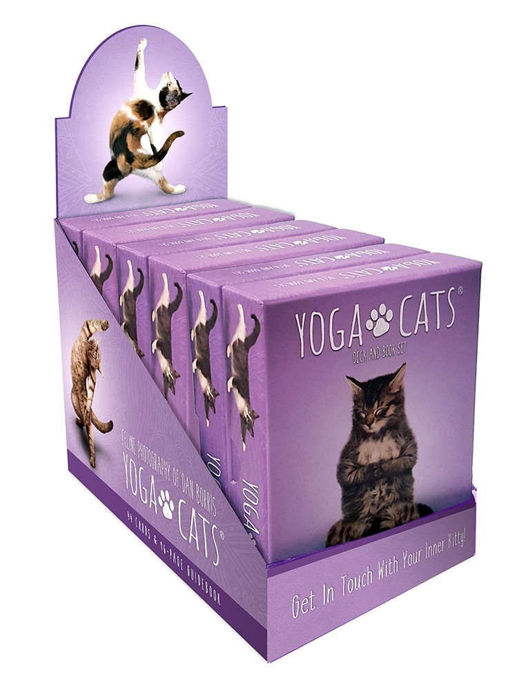 Yoga Cats Display