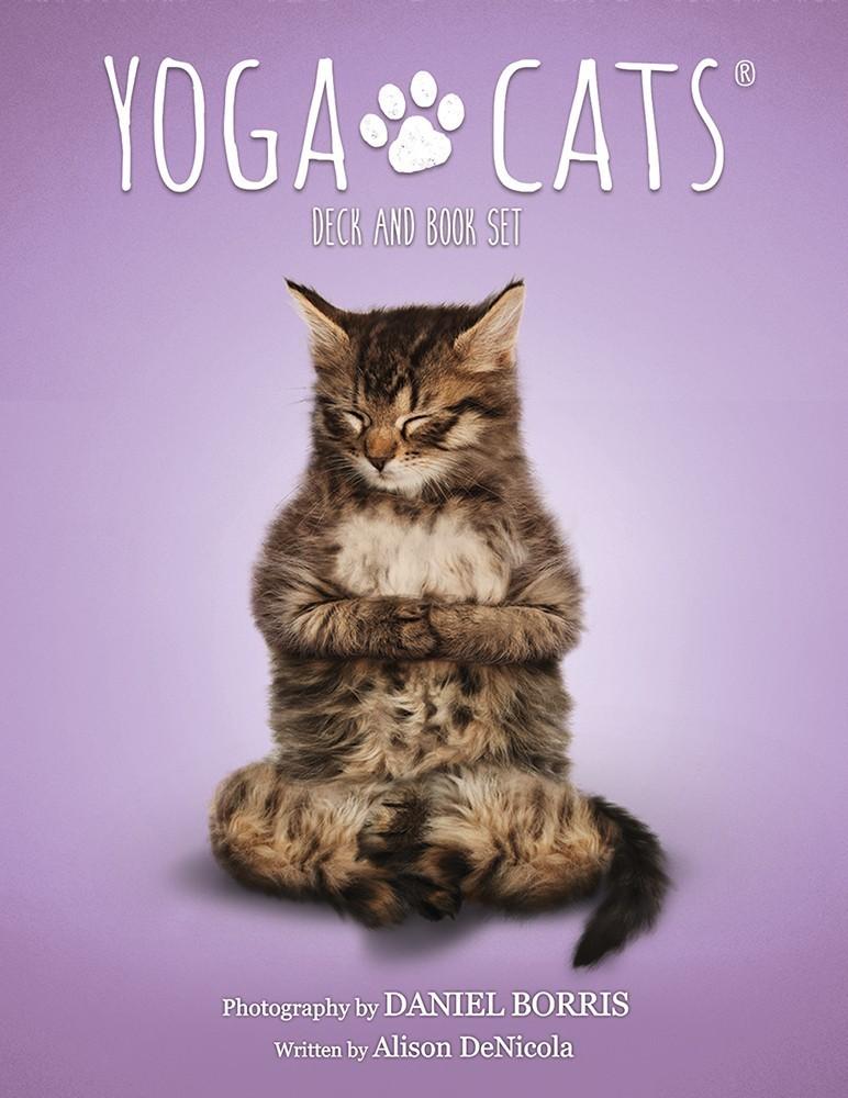 Yoga Cats Deck Amp Book Set