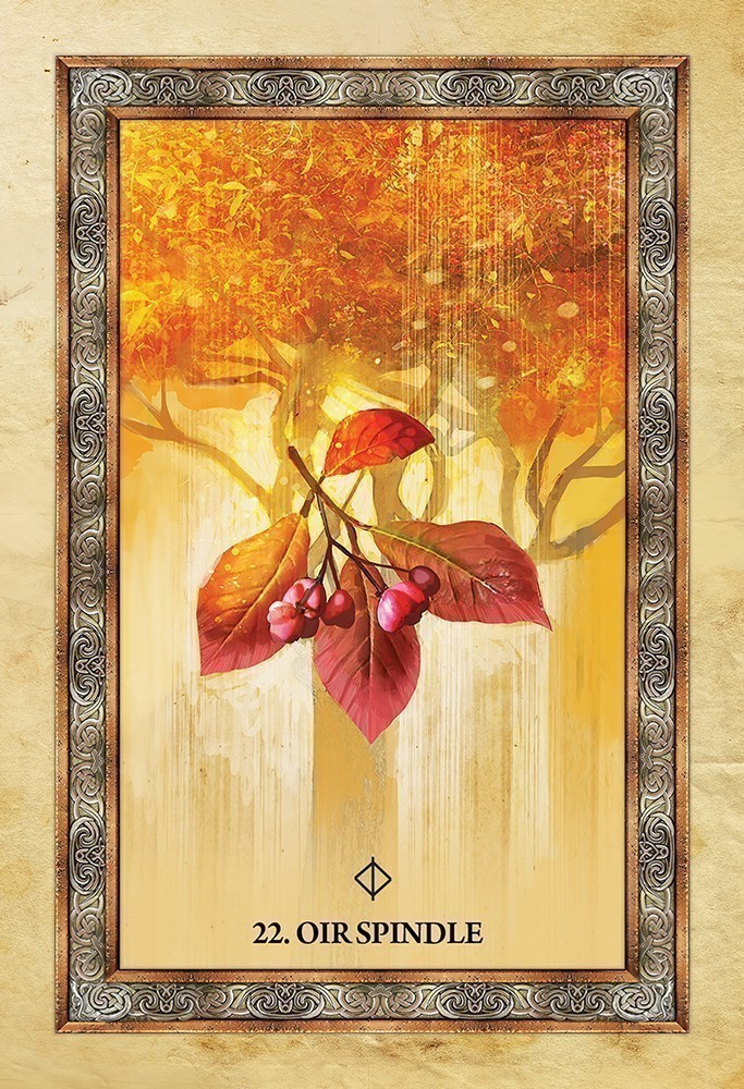 Learn lenormand book combinations math