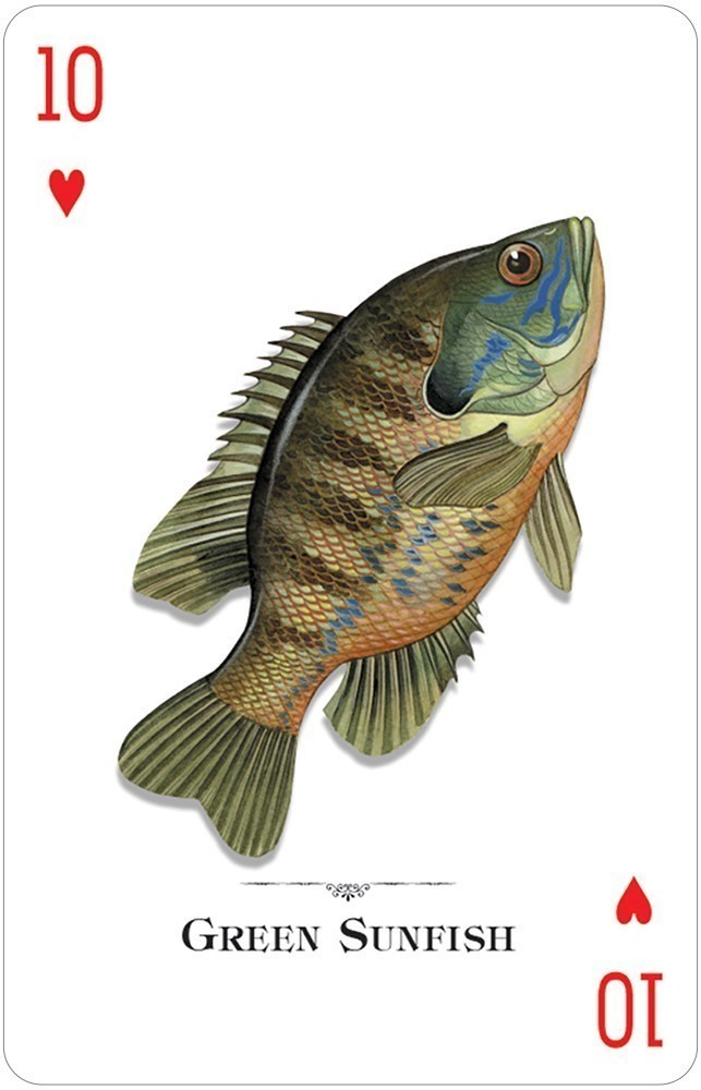 Fish, Freshwater, Playing Cards