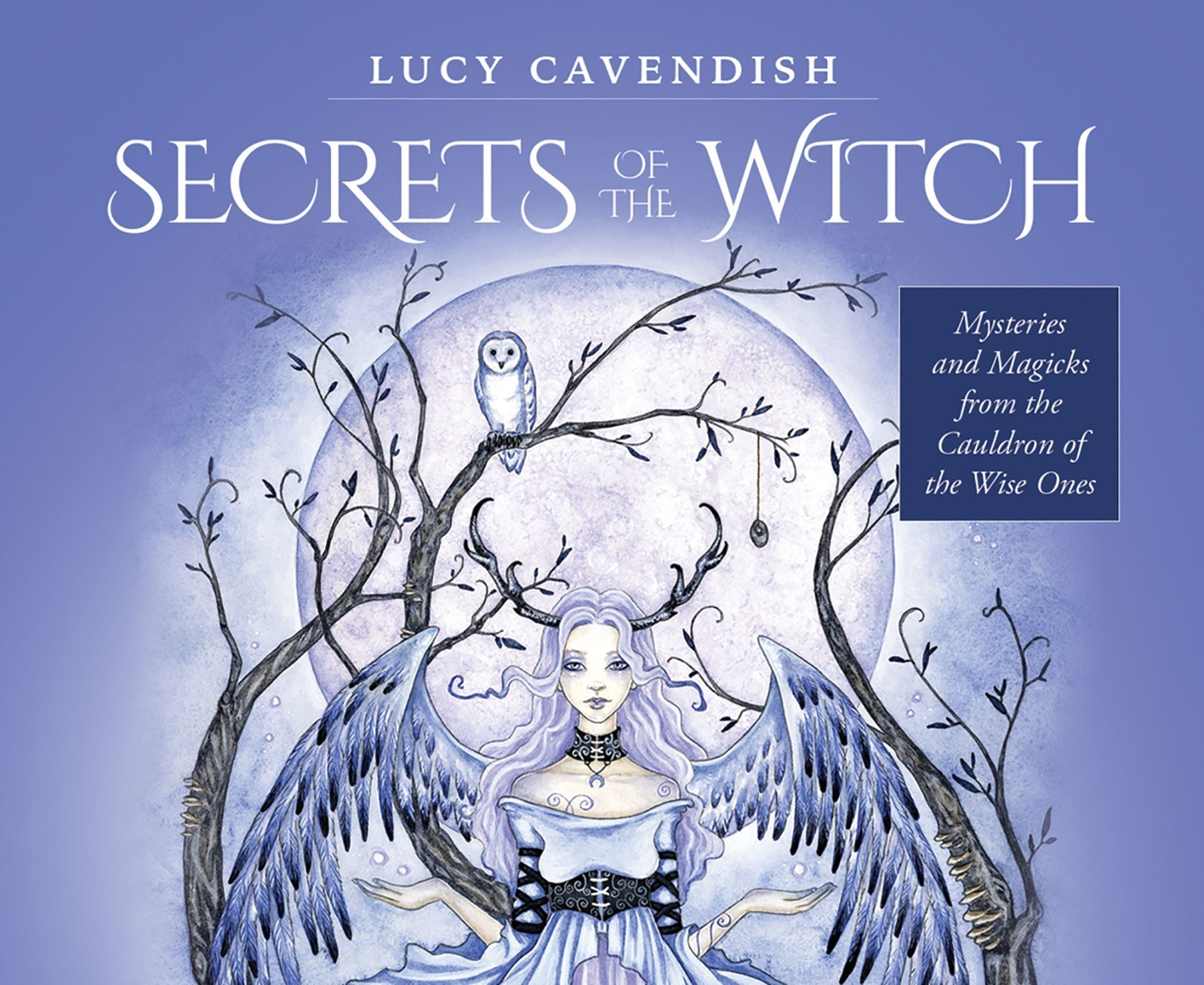 Secrets of the Witch Oracle Cards: Mysteries and Magicks from the Cauldron of the Wise Ones