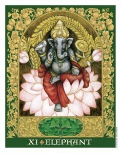 Sacred World Oracle Elephant
