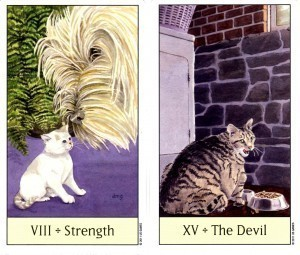 Cat's Eye | Strength vs The Devil