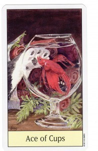 Cat's Eye Tarot Ace of Cups