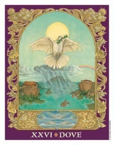 Sacred World Oracle Dove